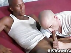 white stud worships large darksome rod